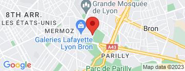 Carte TOTEM (Improvisation) - Petit Paumé