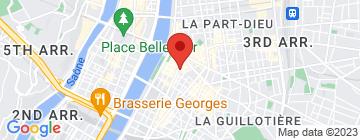 Carte Mosaïque de Lyon - Petit Paumé