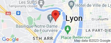 Carte Les Terrasses de Lyon - Petit Paumé