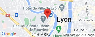 Carte ECAM Lyon - Petit Paumé