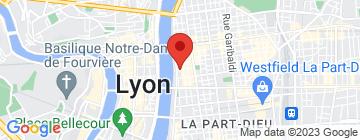 Carte Physiconcept - Petit Paumé
