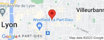 Carte Lyon Natation - Petit Paumé