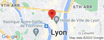 Carte A2micile Lyon Centre - Petit Paumé
