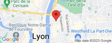Carte Lyon 6 La vieille réserve - Petit Paumé