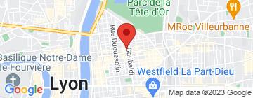Carte Luis coiffeur Lyon 6 - Petit Paumé