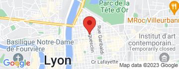 Carte Lyon Bleu International - Petit Paumé