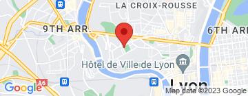 Carte Lyon Espace Boxes - Petit Paumé