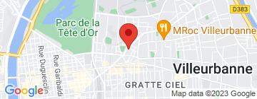Carte Lyon Bombing - Petit Paumé