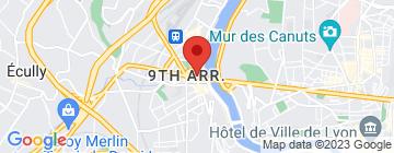 Carte ADV Lyon - Petit Paumé