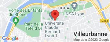 Carte Polytech Lyon - Petit Paumé