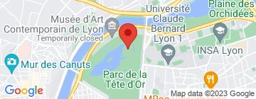 Carte Urban Challenge - Petit Paumé