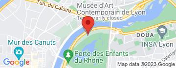 Carte UGC Lyon - Cité Internationale - Petit Paumé