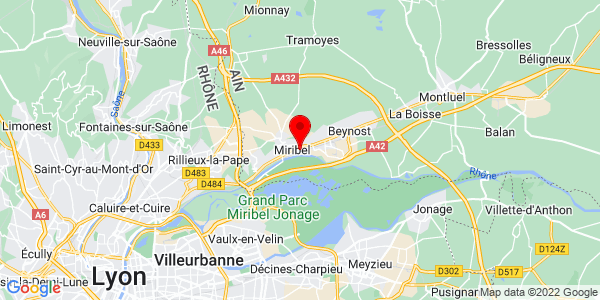 Google Map of 45.8244996,4.959465