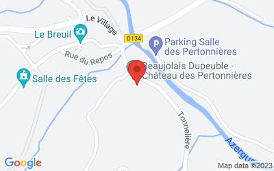Château des Pertonnières, 69620 Le Breuil, France