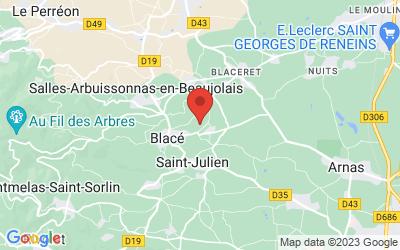 227 Route de Pravins, 69460 Blacé, France