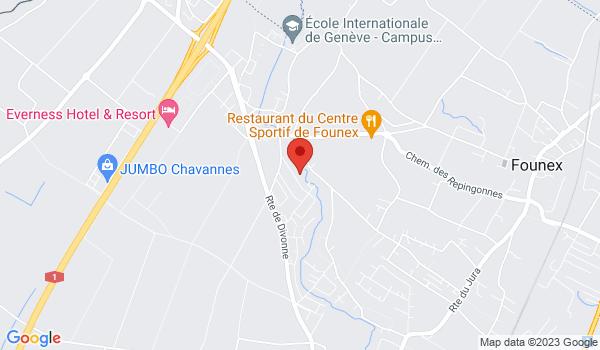 Google map positionnant le bien Magnifique villa mitoyenne à Founex