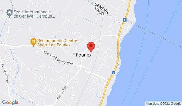 Google map positionnant le bien Spacieux duplex de 4.5 à Founex