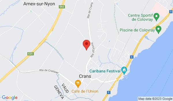 Google map positionnant le bien Maison de village dans le bourg de Crans