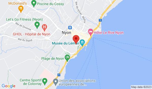 Google map positionnant le bien Bureaux avec beaucoup de cachet à Nyon