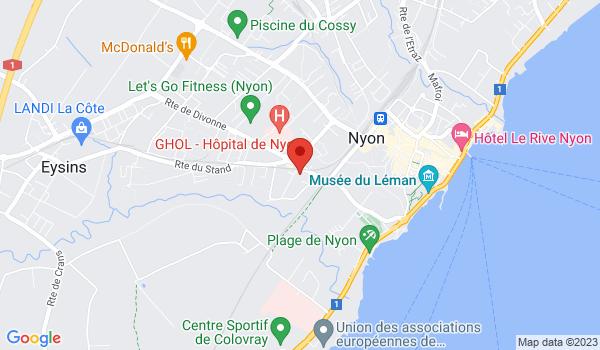 Google map positionnant le bien Charmant 3 pièces avec jardin à Nyon