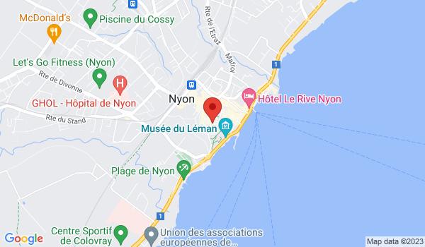 Google map positionnant le bien Beau 3 pièces au centre de Nyon !