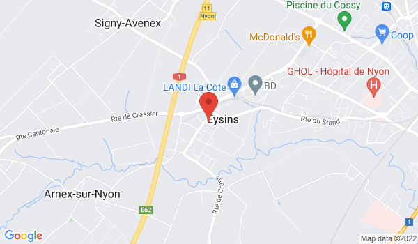 Google map positionnant le bien Arcade commerciale à Eysins