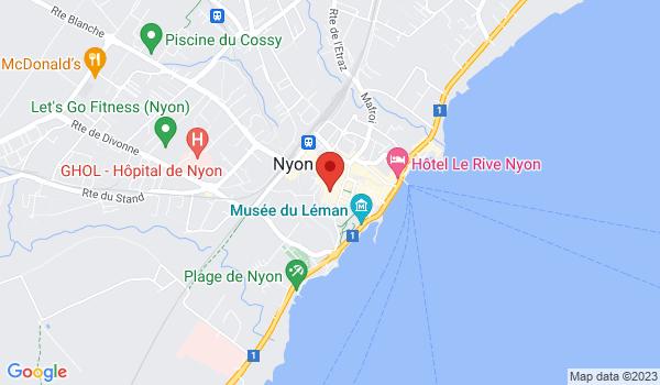 Google map positionnant le bien Grands bureaux idéalement situés au centre de Nyon