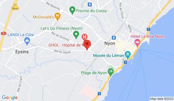 Google map positionnant le bien Bel appartement de 4.5 pièces à Nyon