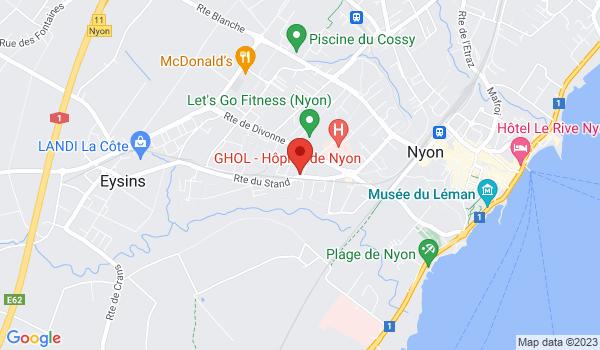 Google map positionnant le bien Bel appartement rénové de 4 pièces à Nyon