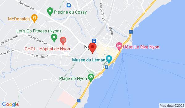 Google map positionnant le bien Bel appartement de 4 pièces au centre-ville de Nyon