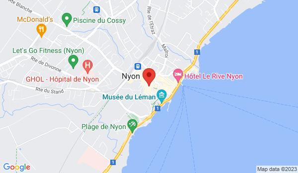 Google map positionnant le bien Superbe arcade au centre ville de Nyon