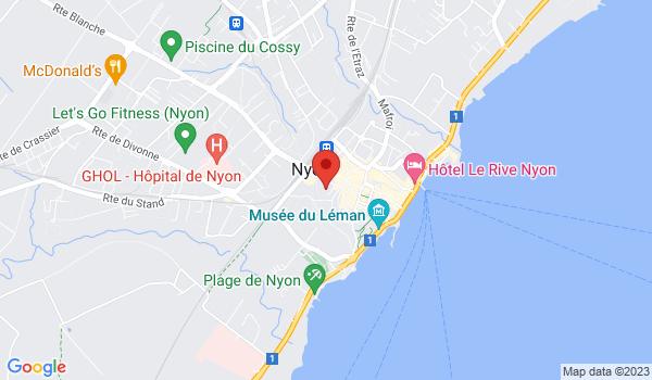 Google map positionnant le bien Superbe appartement dans une maison au centre de Nyon