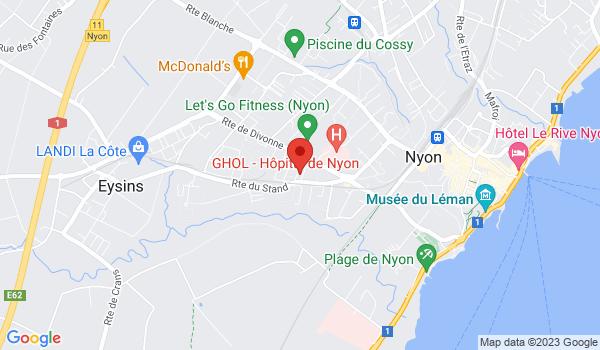 Google map positionnant le bien Bel appartement de 4 pièces à Nyon