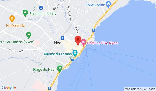 Google map positionnant le bien Studio au coeur de la ville de Nyon
