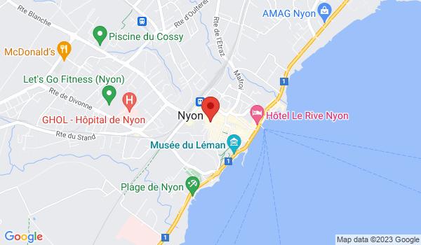 Google map positionnant le bien Somptueux duplex d'env. 165m2 avec terrasse au coeur de Nyon!