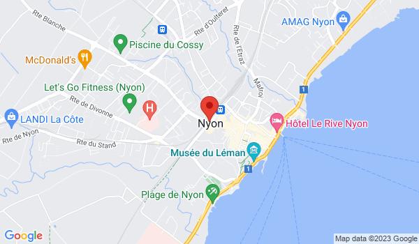 Google map positionnant le bien Local à louer à Nyon