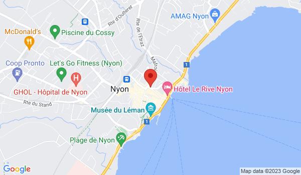 Google map positionnant le bien Magnifique appartement neuf de 3,5 pièces avec vue sur le lac !