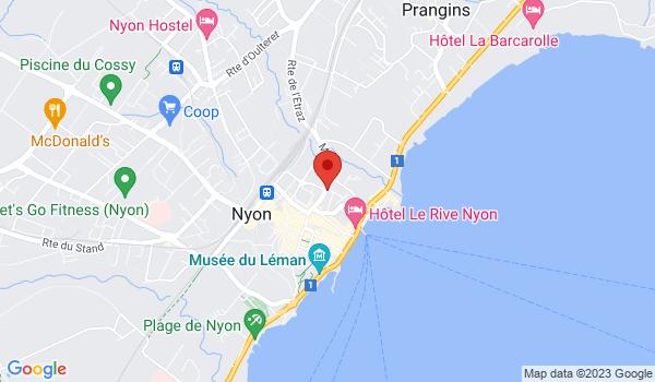 Google map positionnant le bien Superbe appartement de 3,5 pièces au centre de Nyon