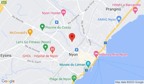 Google map positionnant le bien Spacieux 3,5 pièces situé au centre de Nyon