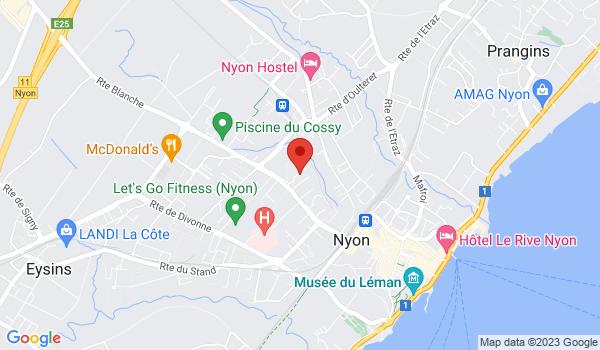 Google map positionnant le bien Joli 3 pièces avec jardin entièrement rénové à Nyon