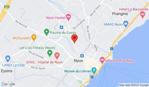 Google map positionnant le bien Local commercial à Nyon