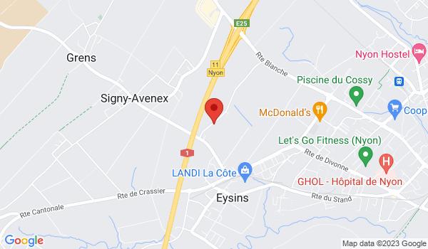 Google map positionnant le bien Places de parc à louer à Eysins
