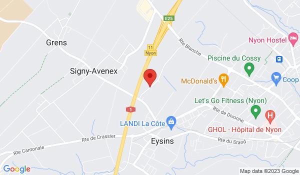 Google map positionnant le bien Superbe duplex moderne à Eysins