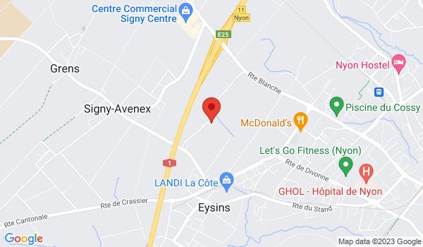 Google map positionnant le bien Place de parc à Eysins