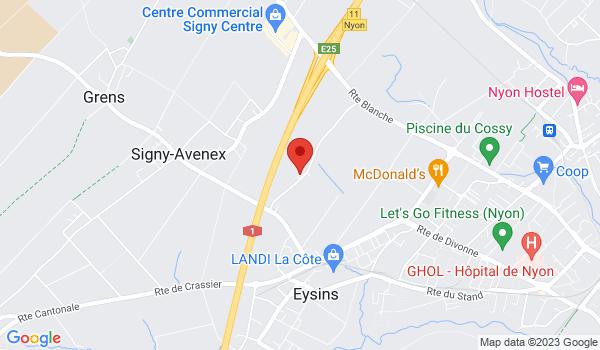 Google map positionnant le bien Villa mitoyenne de standing d'env. 230m2 à Eysins