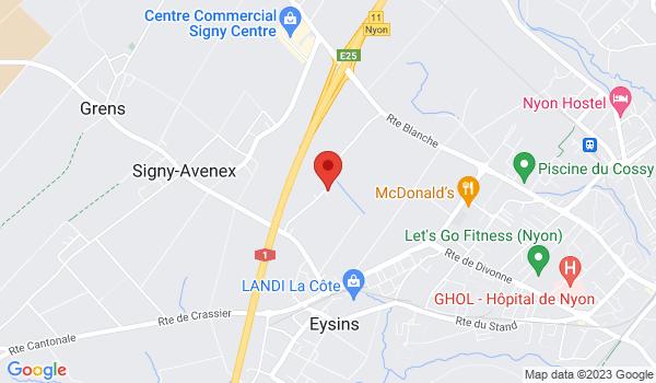Google map positionnant le bien Bel appartement de 4 pièces avec balcon à Eysins