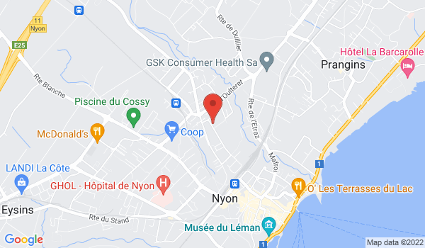 Google map positionnant le bien Superbe villa mitoyenne en triplex située à Nyon