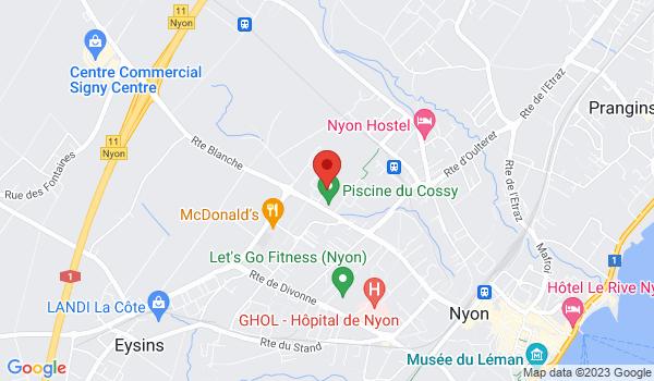 Google map positionnant le bien Spacieux et lumineux appartement de 4,5 pièces à Nyon