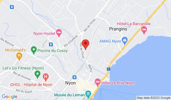 Google map positionnant le bien Magnifique demeure dans un écrin de verdure à Nyon