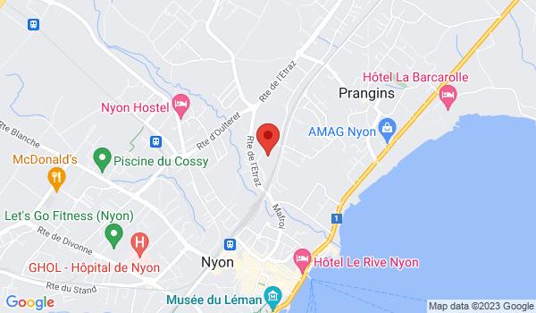 Google map positionnant le bien Appartement de 3 pièces duplex à Nyon